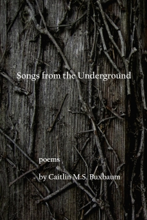 Songs from the Underground